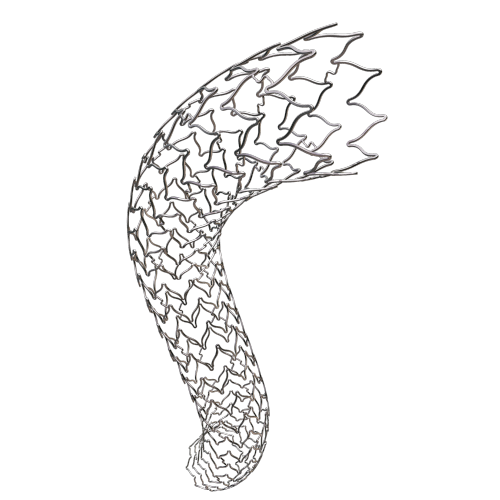 Peripheral Stent System